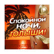 Dfm Спокойной Ночи, Голыши! (Москва)